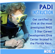 PADI Instruction Scuba Diving Classes
