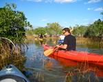 Everglades Kayak Aventure