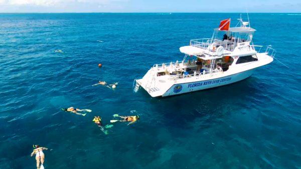 Half Day Snorkel Charters - John Pennekamp Reefs | Florida ...